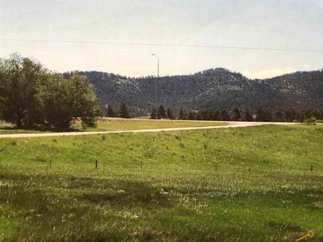 TBD Woodland Dr, Hot Springs, SD 57747 (MLS #137416) :: Christians Team Real Estate, Inc.