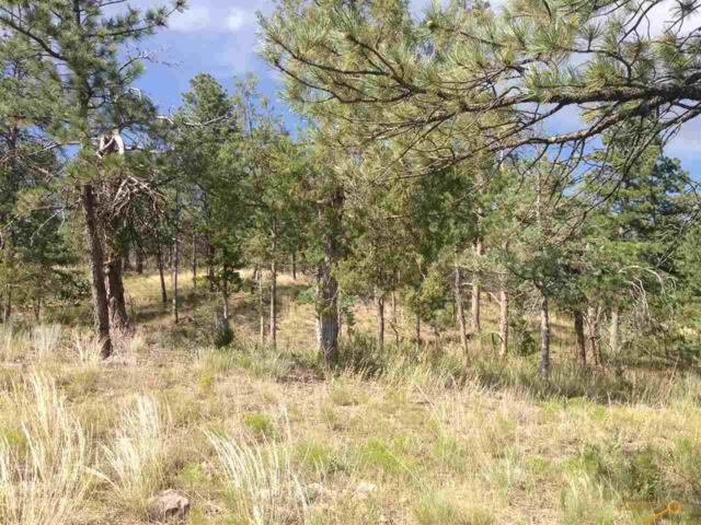 TBD Pine Hills Dr, Rapid City, SD 57702 (MLS #137560) :: Christians Team Real Estate, Inc.