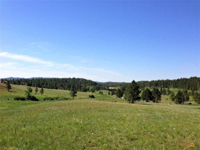 Other, Hot Springs, SD 57747 (MLS #137672) :: Christians Team Real Estate, Inc.