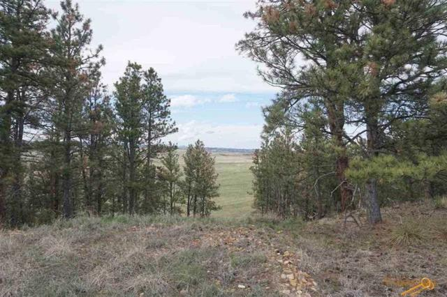 TBD Hwy 385, Hot Springs, SD 57747 (MLS #137674) :: Christians Team Real Estate, Inc.