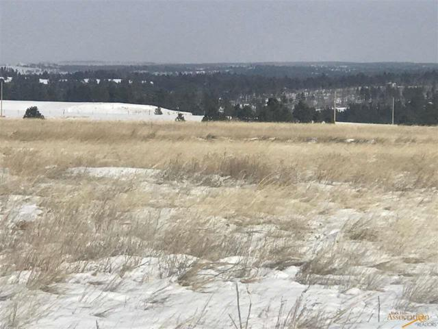 TBD Turkey Trail, Edgemont, SD 57735 (MLS #137839) :: Christians Team Real Estate, Inc.