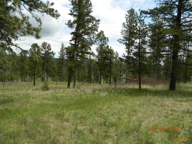 Lot 67 Emerald Ridge Rd, Rapid City, SD 57702 (MLS #137876) :: Christians Team Real Estate, Inc.