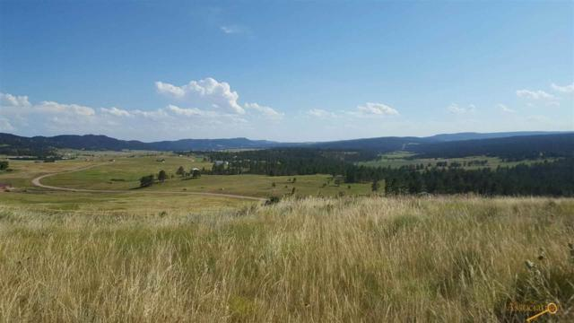 TBD Darcy Dr, Custer, SD 57747 (MLS #138158) :: Christians Team Real Estate, Inc.