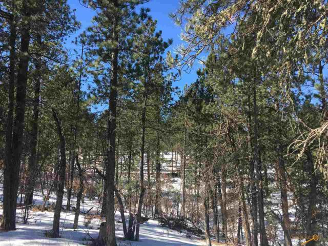 Lot 12 Other, Sturgis, SD 57785 (MLS #138226) :: Christians Team Real Estate, Inc.