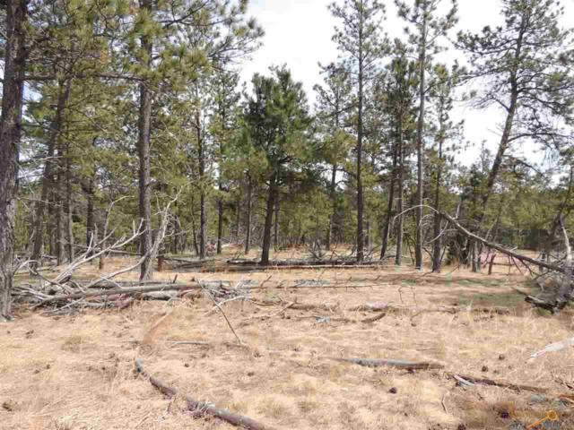 Lot 14 Wolf Ln, Hot Springs, SD 57747 (MLS #138394) :: Christians Team Real Estate, Inc.