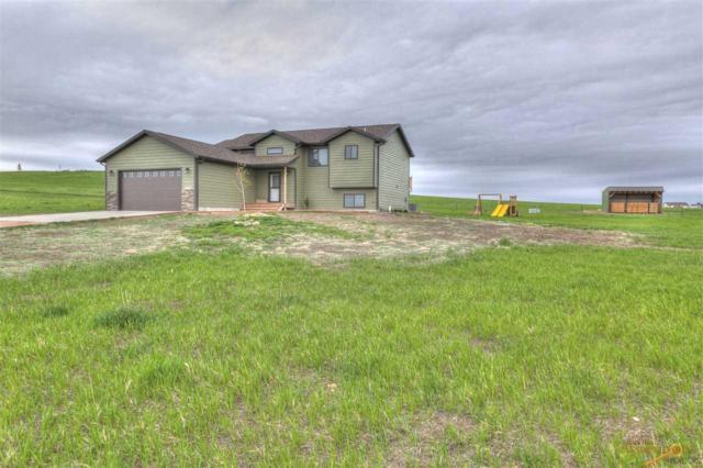 22883 Latigo Ave, Box Elder, SD 57719 (MLS #138862) :: Christians Team Real Estate, Inc.