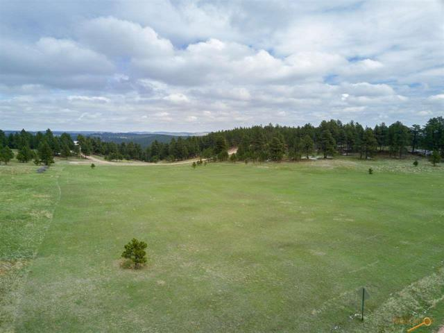 Lot 2, TBD Canyon Ct, Hermosa, SD 57744 (MLS #138921) :: Christians Team Real Estate, Inc.