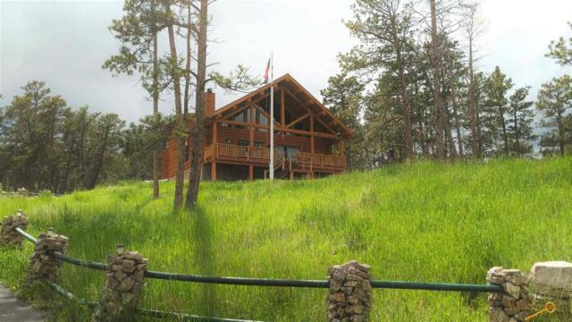 11431 Big Horn Loop, Piedmont, SD 57769 (MLS #139155) :: Christians Team Real Estate, Inc.