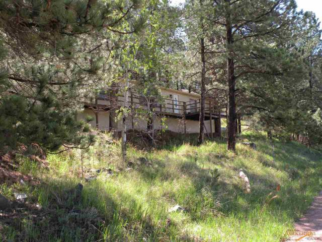 690 Bishop Mt Rd, Hill City, SD 57745 (MLS #139263) :: Christians Team Real Estate, Inc.