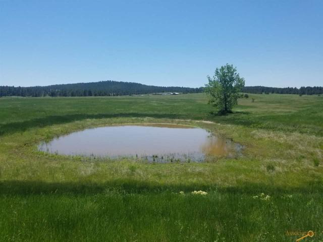 2750 220TH ST, Piedmont, SD 57769 (MLS #139529) :: Christians Team Real Estate, Inc.