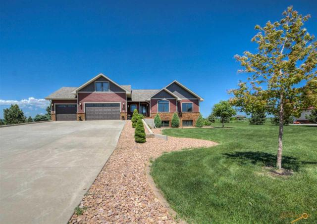 16295 Willow Wood Rd, Piedmont, SD 57769 (MLS #139588) :: Christians Team Real Estate, Inc.