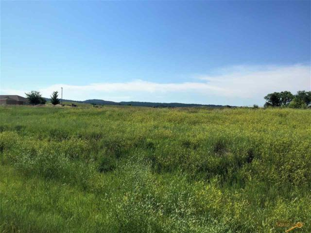 Unaddressed, Hot Springs, SD 57747 (MLS #139805) :: Christians Team Real Estate, Inc.