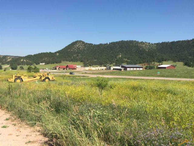 Unaddressed, Hot Springs, SD 57747 (MLS #139806) :: Christians Team Real Estate, Inc.