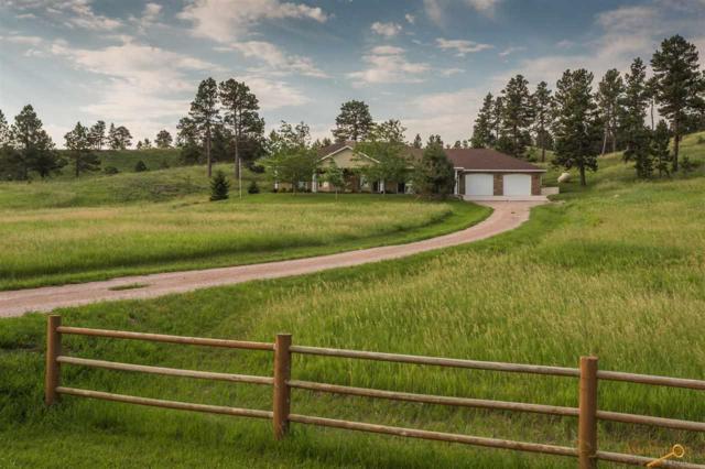 15383 Ridgeview Tr, Piedmont, SD 57769 (MLS #139817) :: Christians Team Real Estate, Inc.