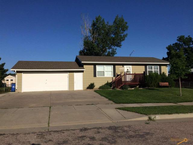 4305 Dolphin Ln, Rapid City, SD 57701 (MLS #139987) :: Christians Team Real Estate, Inc.