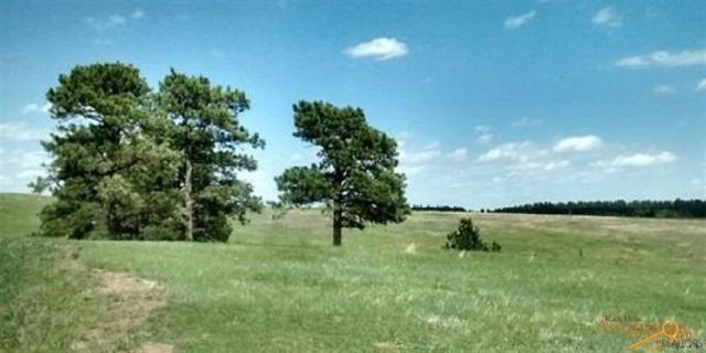 TBD Other, Piedmont, SD 57769 (MLS #140293) :: Christians Team Real Estate, Inc.