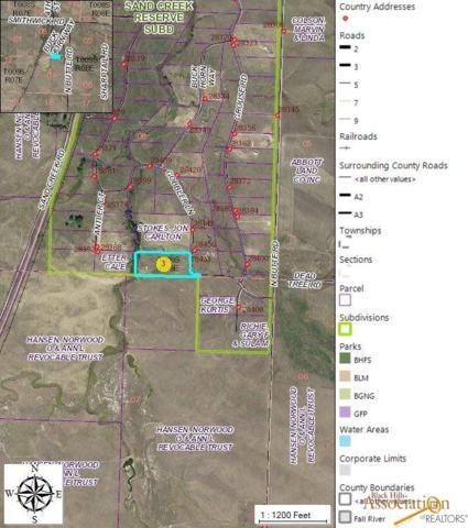 28453 Gobbler Ln, Smithwick, SD 57782 (MLS #140349) :: Christians Team Real Estate, Inc.