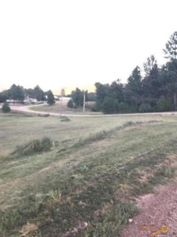 Country Club Ct, Hot Springs, SD 57757 (MLS #140585) :: Christians Team Real Estate, Inc.