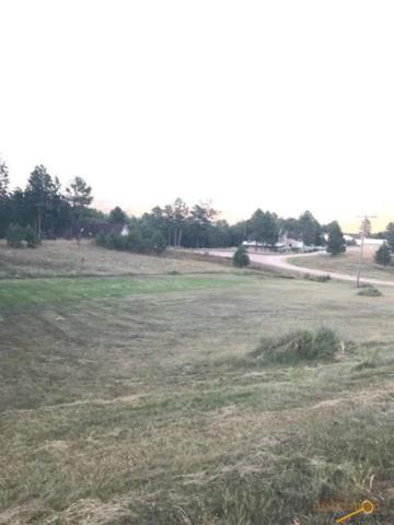 Country Club Ct, Hot Springs, SD 57757 (MLS #140586) :: Christians Team Real Estate, Inc.