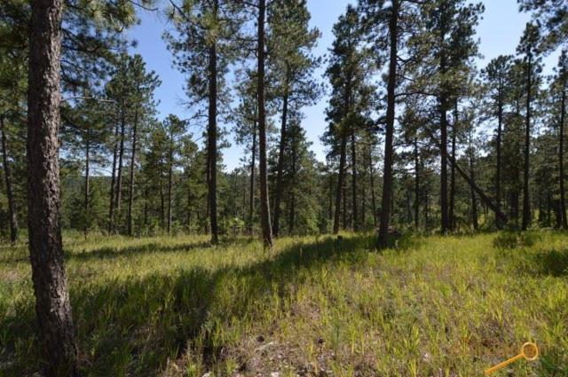23610 Wilderness Canyon Rd, Rapid City, SD 57702 (MLS #140610) :: Christians Team Real Estate, Inc.