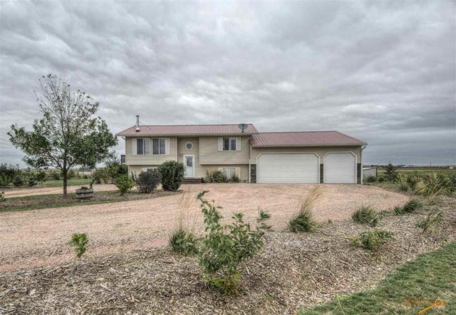 14976 Antelope Flats, Box Elder, SD 57719 (MLS #140709) :: Christians Team Real Estate, Inc.