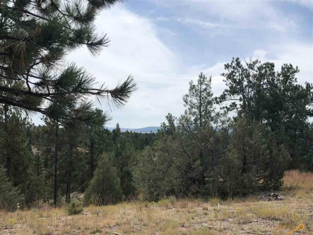 Lot 1 Red Canyon Rd, Hot Springs, SD 57747 (MLS #140784) :: Christians Team Real Estate, Inc.