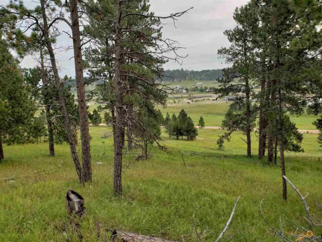 TBD Pleasant Valley Dr, Sturgis, SD 57785 (MLS #140848) :: Christians Team Real Estate, Inc.
