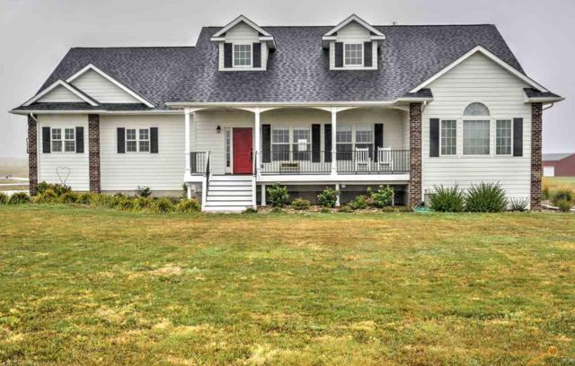 16556 Willow Wood Rd, Piedmont, SD 57769 (MLS #140916) :: Christians Team Real Estate, Inc.
