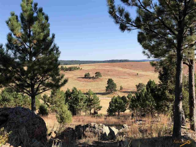 Eagles Nest 1 Stage Stop Rd, Custer, SD 57730 (MLS #140966) :: Christians Team Real Estate, Inc.