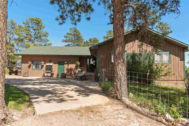 8320 Miracle Rd, Rapid City, SD 57702 (MLS #141447) :: Christians Team Real Estate, Inc.