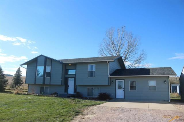 14137 Erickson Ranch Rd, Piedmont, SD 57769 (MLS #141454) :: Christians Team Real Estate, Inc.