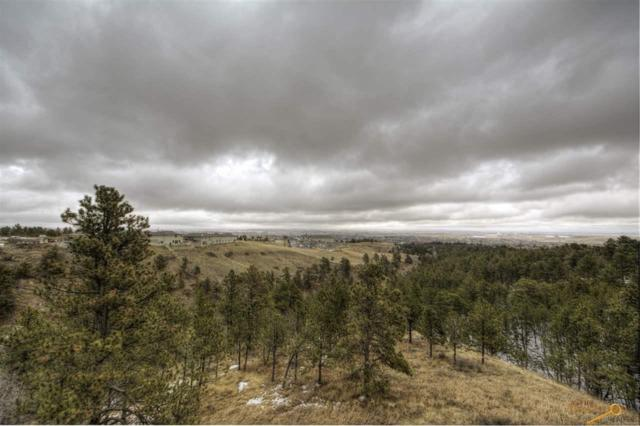 3716 City View Dr, Rapid City, SD 57701 (MLS #141612) :: Christians Team Real Estate, Inc.