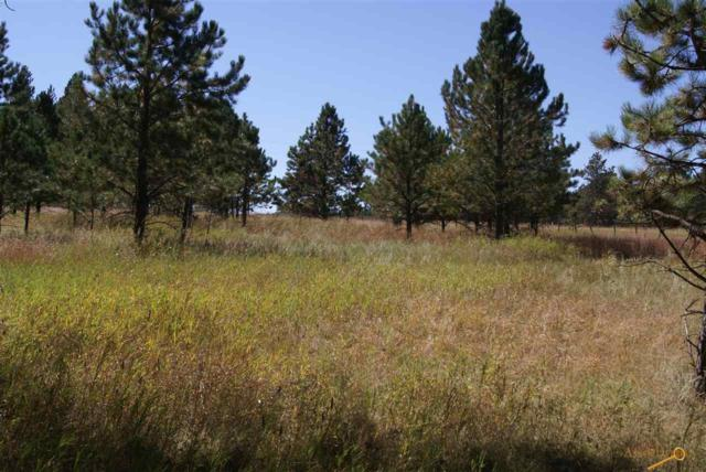 Tract 8 Last Stand Rd, Custer, SD 57730 (MLS #141628) :: Christians Team Real Estate, Inc.