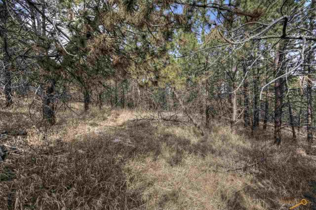 3350 Skyline Dr, Rapid City, SD 57701 (MLS #142096) :: Christians Team Real Estate, Inc.