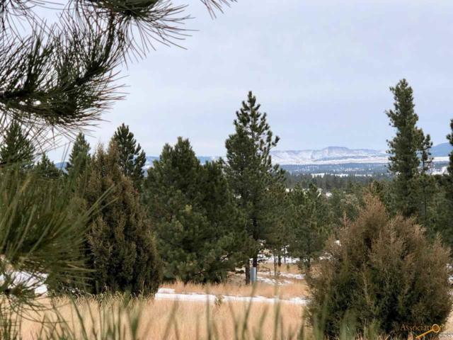 TBD Red Canyon Rd, Custer, SD 57730 (MLS #142176) :: Christians Team Real Estate, Inc.
