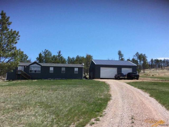 25492 Mt Shadow Rd, Custer, SD 57735 (MLS #142180) :: VIP Properties