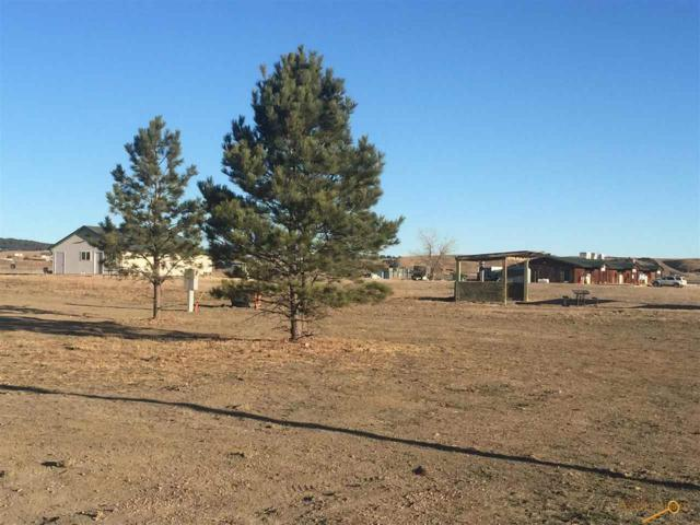 750 Marie St, Hermosa, SD 57744 (MLS #142357) :: Dupont Real Estate Inc.