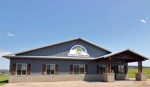 955 Pine View Dr, Sturgis, SD 57785 (MLS #142405) :: Christians Team Real Estate, Inc.