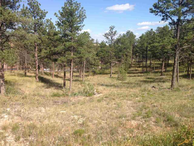 TBD Pine Hills Dr, Rapid City, SD 57702 (MLS #142449) :: Christians Team Real Estate, Inc.