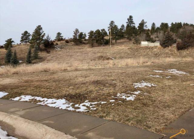 1136 Oriole Dr, Rapid City, SD 57701 (MLS #142567) :: Christians Team Real Estate, Inc.