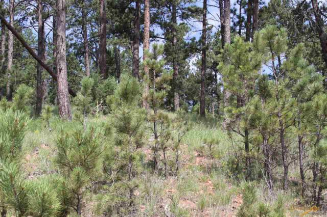 Lot 16 Wolf Ln, Custer, SD 57730 (MLS #142579) :: Dupont Real Estate Inc.