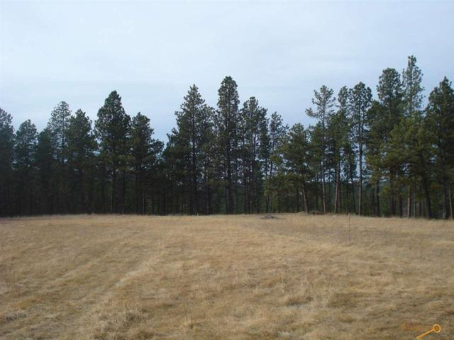 TBD N Emerald Ridge Rd, Rapid City, SD 57702 (MLS #142583) :: Christians Team Real Estate, Inc.