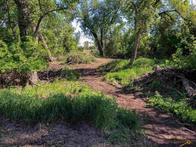 6870 Green Willow Dr, Rapid City, SD 57701 (MLS #142638) :: Christians Team Real Estate, Inc.