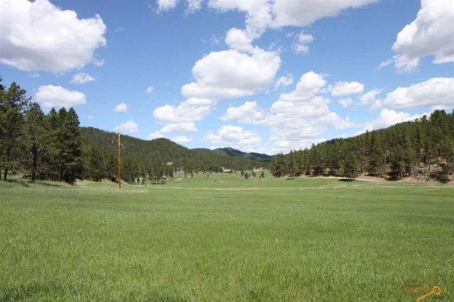 Beaver Creek Rd, Custer, SD 57730 (MLS #142687) :: Christians Team Real Estate, Inc.