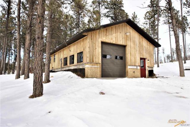 25528 Flynn Creek Rd, Custer, SD 57730 (MLS #142745) :: VIP Properties