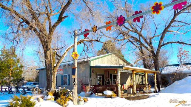 402 Norris, Wall, SD 57790 (MLS #142814) :: Christians Team Real Estate, Inc.