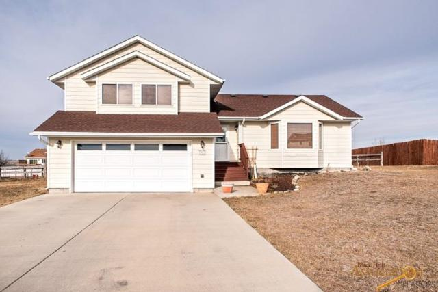 252 Freiheit Ln, Box Elder, SD 57719 (MLS #142864) :: Christians Team Real Estate, Inc.