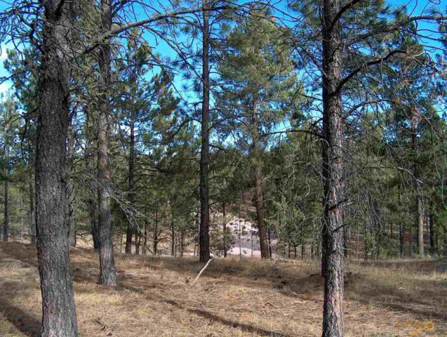Lot 9 Other, Custer, SD 57730 (MLS #143044) :: Christians Team Real Estate, Inc.