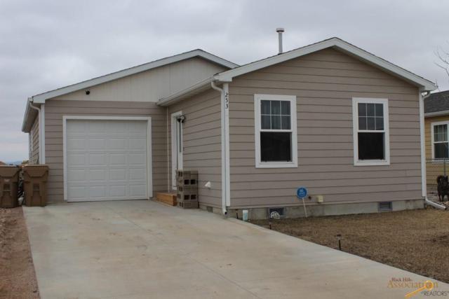 253 Trenton Ln, Box Elder, SD 57719 (MLS #143125) :: Christians Team Real Estate, Inc.