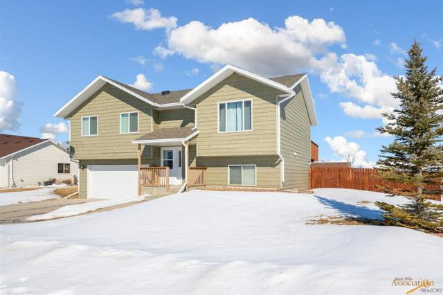 256 Freiheit Ln, Box Elder, SD 57719 (MLS #143133) :: Christians Team Real Estate, Inc.